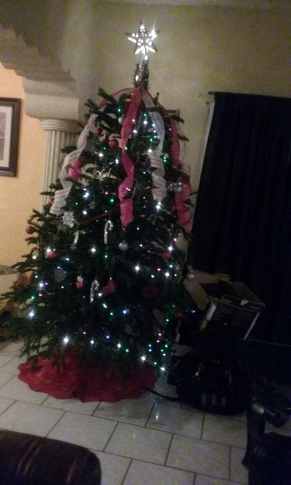 Anahi_my_Christmas_tree.jpg